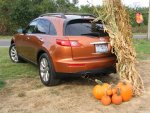 pumpkin with pumpkins.jpg